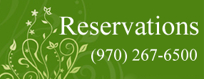 fort collins party reservations