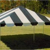 Canopy - 20' x 30'
